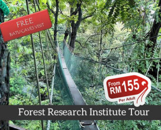 forest research institute tour